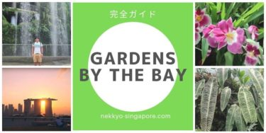 【割引あり】ガーデンズ・バイ・ザ・ベイ完全ガイド
