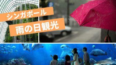 シンガポールの雨季はいつ?在住者が雨のおすすめ観光と雨対策を紹介
